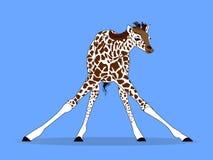 Bambino della giraffa che impara camminare vettore Fotografia Stock Libera da Diritti