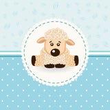 Bambino delle pecore Fotografie Stock
