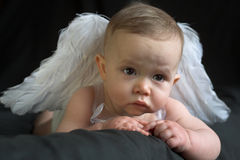 Bambino di angelo fotografia stock