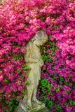 Bambino di fiore Fotografia Stock Libera da Diritti