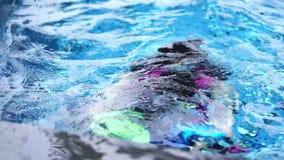 Bambino di nuoto asiatico di insegnamento dell'istruttore in stagno video d archivio