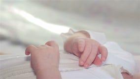 Bambino di un mese della mano video d archivio