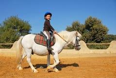 Bambino e cavallino Fotografia Stock