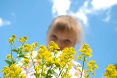 Bambino e cielo di fiore Immagini Stock