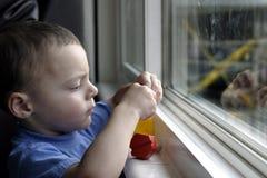 Bambino e la sua attenzione intera Fotografia Stock Libera da Diritti
