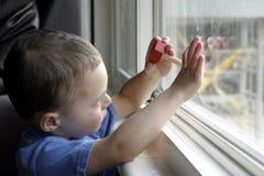 Bambino e la sua attenzione intera Immagini Stock