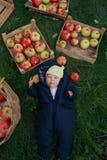 Bambino e mele Fotografia Stock Libera da Diritti