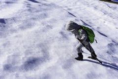 bambino e passeggiata svegli di inverno; trekking, facente un'escursione Fotografia Stock