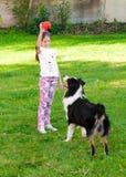 Bambino e un cane Immagine Stock