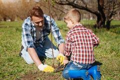Bambino ed suo padre che fanno il giardinaggio insieme Fotografia Stock