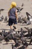 Bambino ed uccelli Fotografie Stock Libere da Diritti