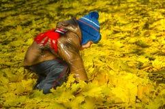 Bambino felice all'aperto fra le foglie gialle fotografia stock