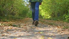 Bambino felice che cammina nel parco di autunno
