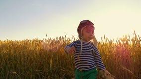 Bambino felice che gioca con l'aeroplano del giocattolo sul giacimento di grano sul fondo di tramonto Il ragazzo mostra il volo d stock footage