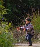 Bambino felice che gioca dente di leone Fotografia Stock Libera da Diritti