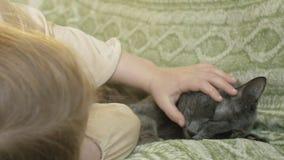 Bambino felice della ragazza con capelli biondi e le trecce che si trovano sul sofà che segna un gatto grigio stock footage