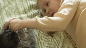 Bambino felice della ragazza con capelli biondi e le trecce che si trovano sul sofà che segna un gatto grigio video d archivio