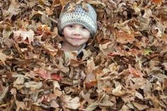 Bambino felice nelle foglie Immagine Stock