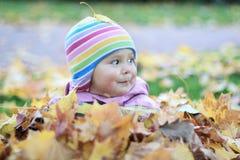Bambino in fogli di autunno Fotografia Stock