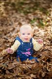Bambino in foglie di caduta immagini stock
