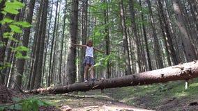 Bambino in Forest Walking Tree Log Kid che gioca il legno all'aperto di campeggio della ragazza di avventura archivi video