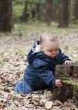Bambino in foresta Fotografia Stock Libera da Diritti