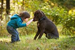 Bambino in giovane età che gioca raccolta con il cane