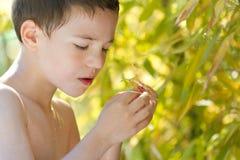 Bambino in giovane età in natura immagini stock