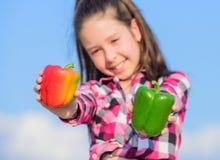 Bambino maturo del raccolto del pepe della tenuta del bambino che presenta i generi di pepe Verdure nostrane del raccolto di cadu fotografia stock libera da diritti
