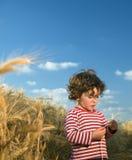 Bambino nel campo di frumento Fotografia Stock Libera da Diritti