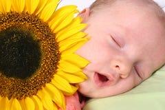 Bambino nel dreamland Fotografia Stock Libera da Diritti