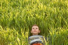 Bambino nel prato nell'erba alta al tramonto Fotografie Stock