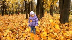 Bambino nella foresta di autunno che gioca con le foglie stock footage