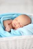 Bambino neonato fotografia stock libera da diritti