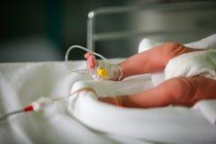 Bambino prematuro Fotografia Stock Libera da Diritti