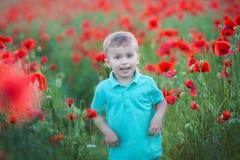 Bambino prescolare sveglio nel campo del papavero, tenente un mazzo dei fiori selvaggi, sorridente fotografie stock libere da diritti