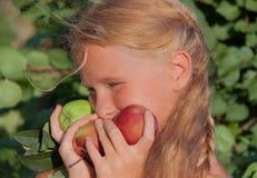 Bambino (ragazza) con le mele Immagini Stock Libere da Diritti