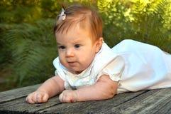 Bambino sul ponticello Fotografie Stock