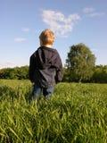 Bambino sul prato Fotografie Stock