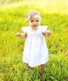 Bambino sveglio che cammina sull'erba di estate soleggiata Immagine Stock Libera da Diritti