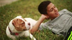 Bambino sveglio che indica nell'erba con il cane adorabile video d archivio