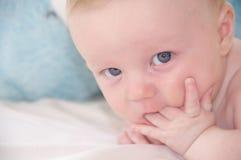 Bambino sveglio con la mano nella bocca Fotografie Stock Libere da Diritti
