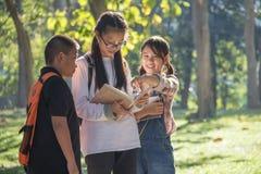 Bambino tre che guarda insieme libro fotografia stock libera da diritti