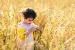Bambino in un campo di grano Fotografie Stock Libere da Diritti