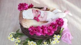 Bambino in un canestro con i fiori nella stanza stock footage