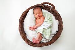 Bambino in un cestino Fotografia Stock