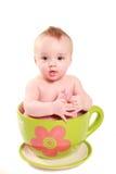 Bambino in una grande tazza Immagine Stock