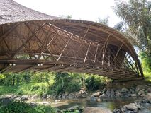 Bambo bro över floden, bro som göras från bambu arkivbild