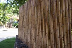 Bambo Fence. On top of a stone wall Stock Photos