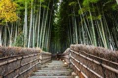 Bambo grove landmark in Arashiyama. Bambo grove and staircase footpath at Adashino Nenbutsuji Temple with fall colors in Arashiyama, Kyoto, Japan Stock Photo